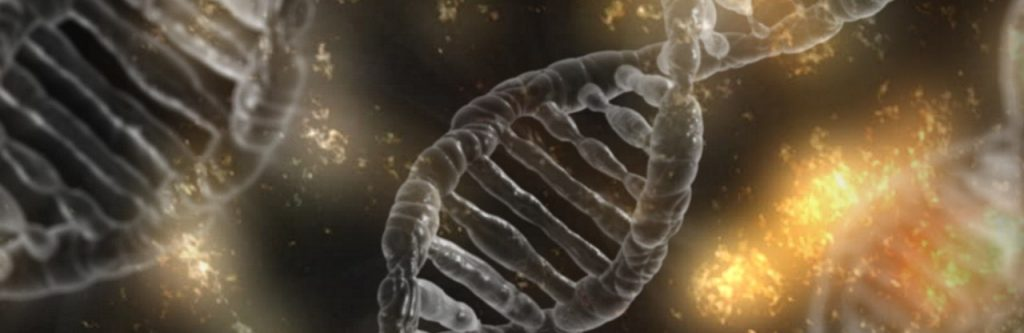 string DNA
