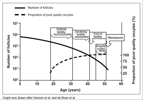 grafico che spiega perché la fertilità diminuisce nel tempo